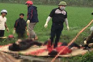 Chồng và vợ mang thai tử vong bí ẩn dưới mương nước ở Thái Bình
