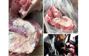 Xử lý việc đưa tin không đúng về thịt lợn nhiễm sán gạo