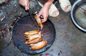 Thịt chuột Việt Nam ngon như phomai que: Tây liều thử rồi mê ngay