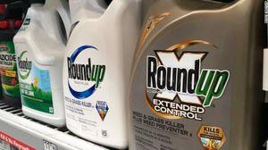 Luật sư nạn nhân chất độc da cam VN: Monsanto biết dioxin độc hại hơn