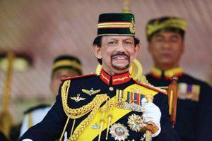 Quốc vương Brunei Darussalam sẽ thăm cấp Nhà nước tới Việt Nam