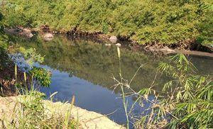 Đắk Lắk: Hơn 6000m3 nước có bùn bẩn đã chảy ra sông Krông Năng