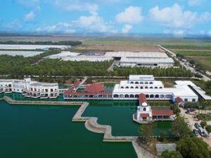 'Resort' bò sữa Vinamilk tại Tây Ninh