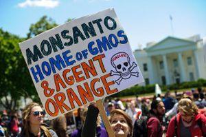 VN yêu cầu Monsanto 'có trách nhiệm khắc phục hậu quả chất độc da cam'