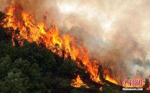 26 lính cứu hỏa thiệt mạng vì gió đổi chiều