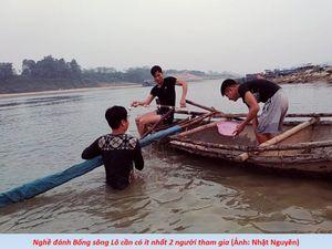 Phú Thọ: Độc đáo nghề đánh Bống trên sông Lô