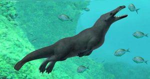 Cá voi 4 chân được tìm thấy ở Peru