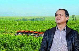 HAGL: 'Tình hình thu hồi công nợ từ nhóm An Phú đã được cải thiện'
