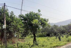 Kéo cáp viễn thông, nhân viên VNPT bị điện giật tử vong