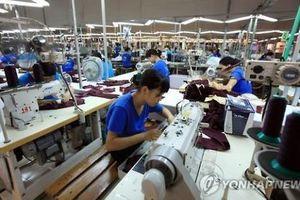 Cơ hội đào tạo nghề miễn phí cho lao động Việt Nam tại Đức