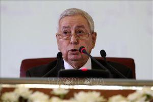 Tổng thống tạm quyền Algeria cam kết tổ chức bầu cử tổng thống trong vòng 3 tháng