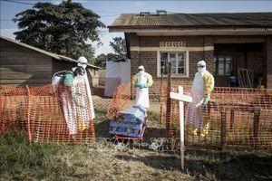 Congo: Dịch Ebola bùng phát, 803 người chết