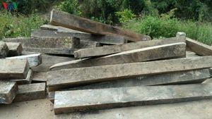 Có hay không việc bảo kê lâm tặc phá rừng di sản ở Quảng Bình?