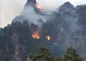 Đã khống chế được cháy rừng đặc dụng Xuân Nha