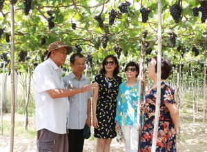 Lượng khách đến Ninh Thuận dịp nghỉ lễ tăng gấp 3 lần năm ngoái