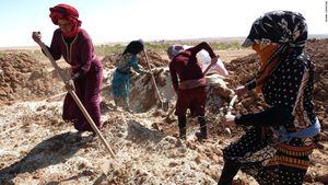 Vùng đất thiên đường dành cho phụ nữ tại Syria