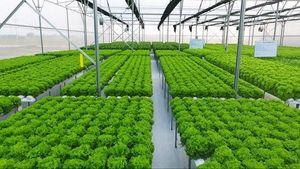 G20 nhóm họp tại Nhật Bản bàn về cải cách sản xuất nông nghiệp