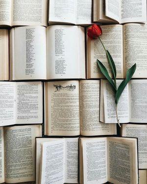 Nỗi nhớ và thi ca