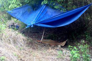 Phát hiện thi thể bé trai 2 tuổi gần chân núi sau 2 ngày mất tích
