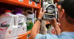 Monsanto phải bồi thường hơn 2 tỷ USD cho cặp vợ chồng mắc ung thư do dùng thuốc diệt cỏ