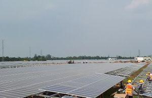 Kỷ lục điện mặt trời hòa lưới: Thách thức khâu vận hành
