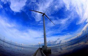 Thúc đẩy huy động vốn đầu tư vào các dự án tăng trưởng xanh