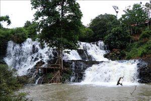 Thủy điện Đắk R'kéh tạm ngừng thi công, đánh giá lại tác động môi trường