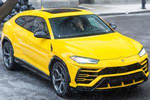 Urus - siêu SUV sẽ giúp Lamborghini vượt qua Ferrari?
