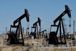 Doanh nghiệp dầu mỏ Mỹ cảnh báo nguy cơ giá nhiên liệu tăng