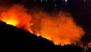 Hơn 200 cán bộ chiến sĩ Đà Nẵng khống chế vụ cháy rừng Sơn Trà trong đêm
