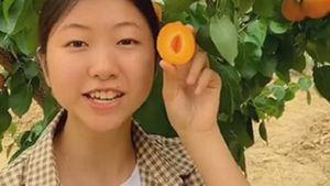 Cô gái làm thuê bỏ nghề kiếm tỷ đồng/năm nhờ trồng loại quả này