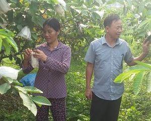 UBND xã Yên Sơn vẫn tiếp tục thu hồi đất trái pháp luật