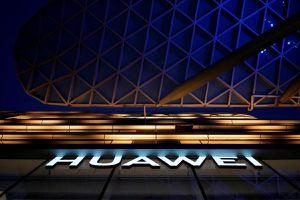 Nhiều công ty Mỹ âm thầm vận động nới lỏng lệnh cấm Huawei