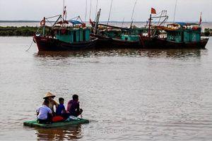 Mùa hè 'đoàn viên' của các gia đình ngư dân trên cảng cá Ngọc Hải