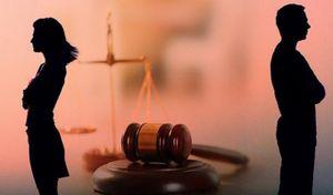 Uẩn khúc bị che giấu đằng sau kết luận tâm thần trong vụ án ly hôn