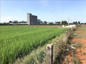 Thực hiện Luật Đất đai 2013, nhìn từ Bình Thuận - Bài 2: 'Lỗ hổng' về định giá đất