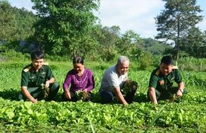 Bài 3: Mô hình kinh tế giúp dân thoát nghèo bền vững