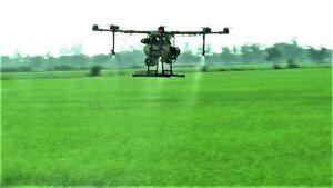 Mô hình ruộng nhà mình sử dụng máy bay phun thuốc bảo vệ thực vật