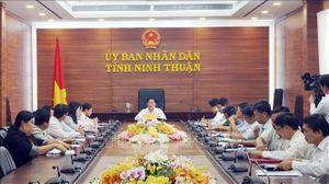Ninh Thuận họp khẩn chống dịch tả lợn châu Phi