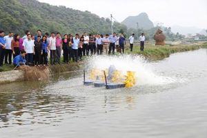 Yên Đồng: Đẩy mạnh phát triển chăn nuôi, thủy sản