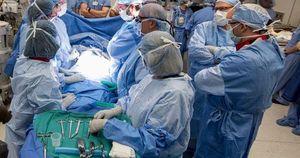 Mỹ: Ca sinh đầu tiên từ tử cung hiến tạng
