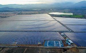Cần sớm có giải pháp cho tình trạng quá tải điện mặt trời ở Ninh Thuận, Bình Thuận