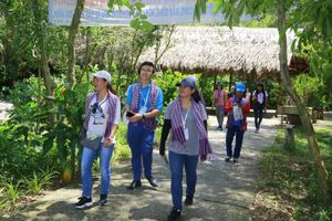 Đồng Tháp: Đẩy mạnh phát triển du lịch nông nghiệp