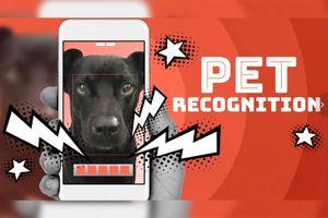 Công nghệ giúp bạn phân biệt 2 chú chó hoặc mèo sinh đôi