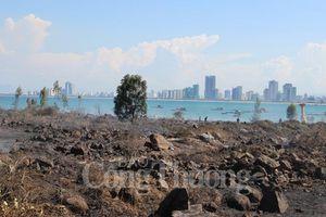 Nắng nóng, Đà Nẵng liên tiếp xảy ra các vụ cháy