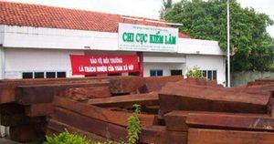 VKSND Tối cao điều tra 4 vụ giải cứu gỗ lậu ở Tiền Giang