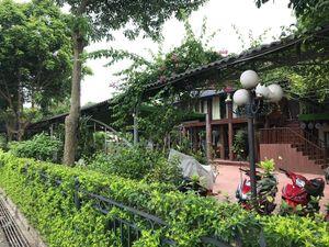 Gia Lâm (Hà Nội): UBND thị trấn Yên Viên có bao che cho vi phạm?