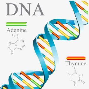 Giải mã bộ gen người, đẩy nhanh thực hành y học chính xác