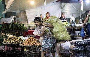 CropLife châu Á kêu gọi hợp tác giải quyết các khủng hoảng lương thực