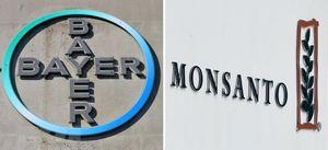Đức: Doanh nghiệp Bayer gặp rắc rối với 'canh bạc' Monsanto